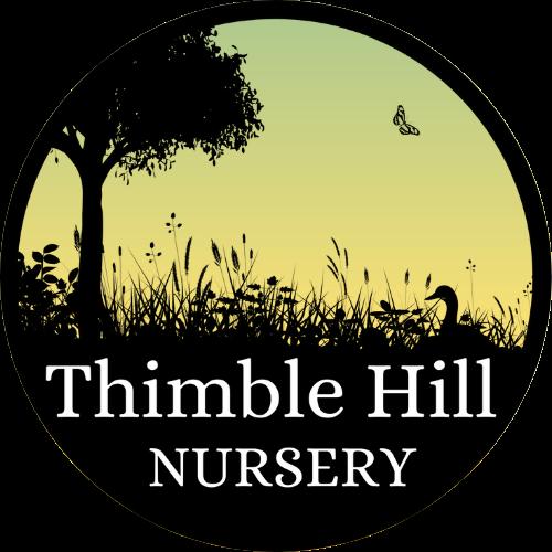 Thimble Hill Nursery